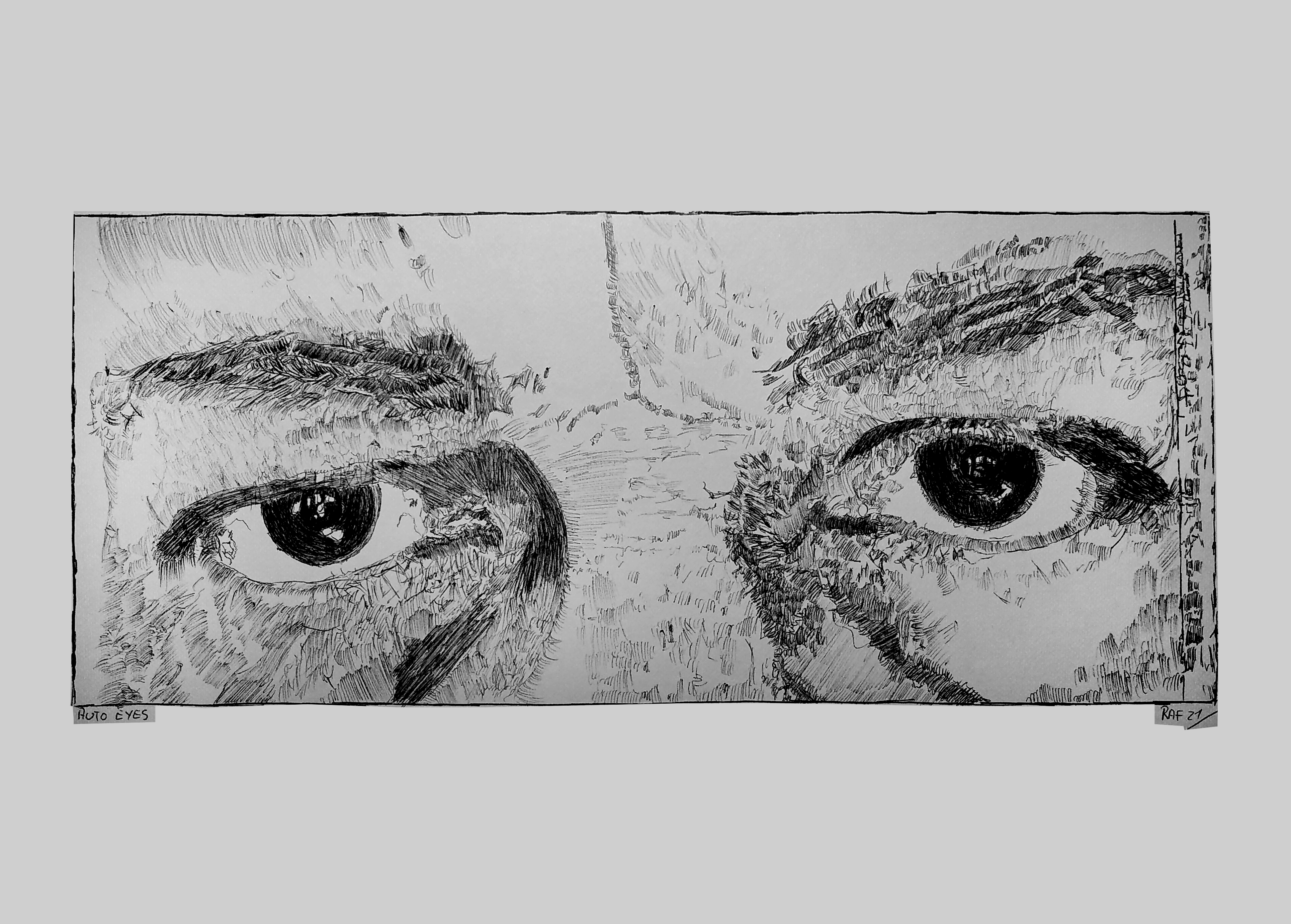 Auto Eyes